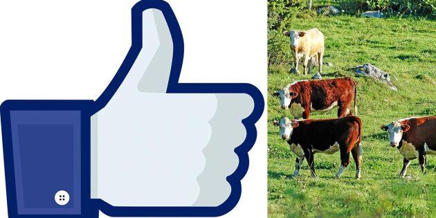 """Gruppen """"Lantbrukaren"""" tillbaka på Facebook"""