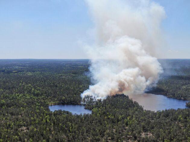 I vissa regioner är brandrisken extremt hög vilket gör att man sätter in brandflyg för att upptäcka markbränder i tid.