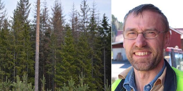 LRF Skogsägarna uppskattar barkborremiljonerna