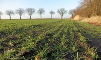 Få nya lantbruksförslag före hösten
