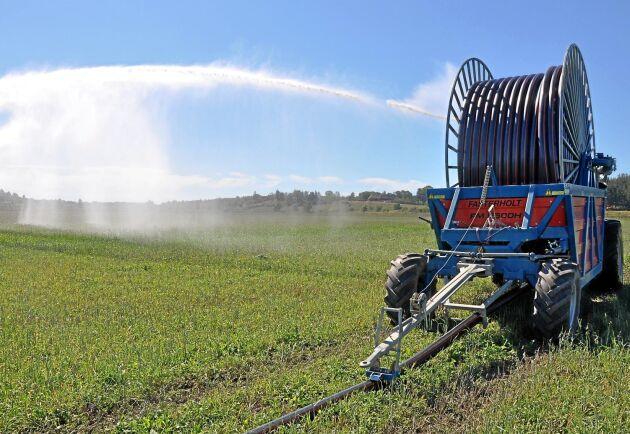 """Bevattningsmaskinerna har redan börjat rulla i Blekinge. En månad tidigare än normalt. Kommer det inte regn snart kan det bli stora problem om det blir ännu ett torrår. """"Vi har sämre utgångsläge än i fjol"""", säger Hans Hedström, rådgivare på Hushållningssällskapet i Blekinge."""