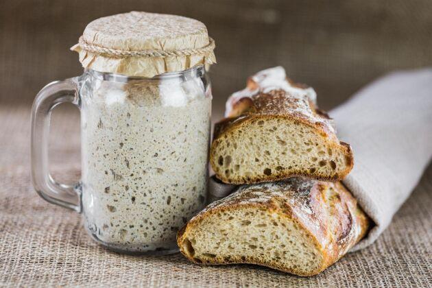 Det finns många olika typer av fermenterad med, till exempel surdegsbröd.