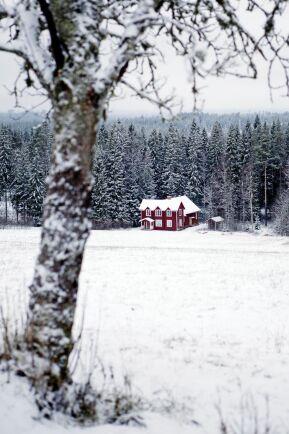 Abborrberget är högt beläget – som de flesta byar i finnmarken – med utsikt över blånande berg och djupa skogar.