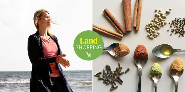 Lugnare mage med Ayurveda – upptäck tusenårig indisk livsfilosofi