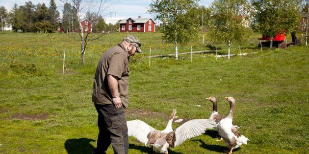 Andreas renoverade gården med återbrukat material