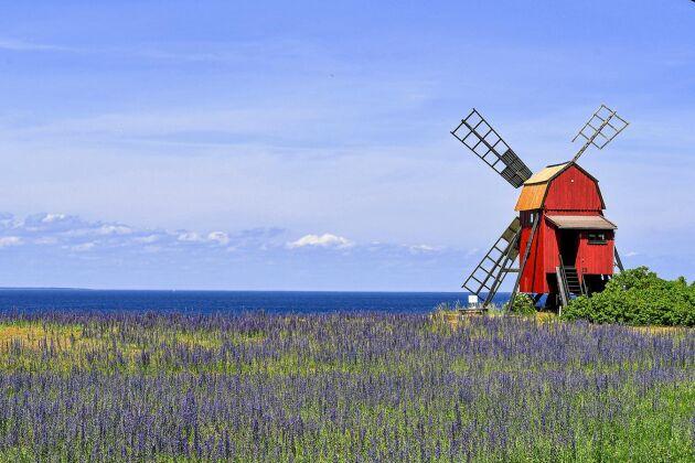 Väderkvarnen i Äleklinta är en av 352 kvarvarande kvarnar på ön. På mitten av 1800-talet hade ön uppåt 2000 väderkvarnar.