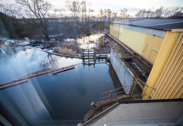 Flödet i Kävlingeån ger tio procent av elbehovet till kvarnen.