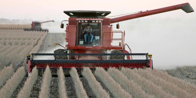 Ryska sojabönder gynnas av handelskrig