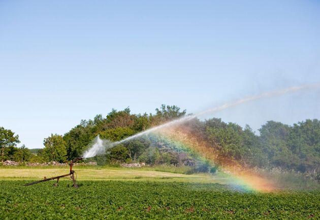 Grundvattennivåerna i landet är lägre än normalt i hela södra Sverige. Arkivbild.