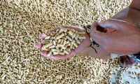 Fortfarande stökigt på pelletsmarknaden