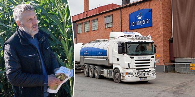 Framtidstron spirar bland mjölkbönder i Västerbotten