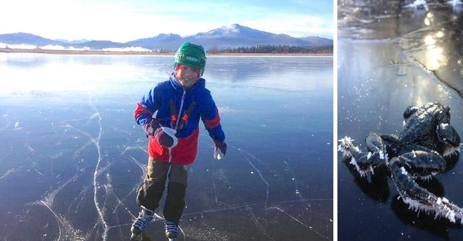 10-årige Johan på hal is - den 16 oktober! Kolla in den stackars grodan till höger.