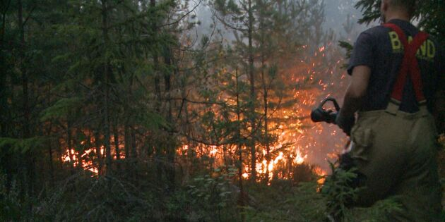 Skogsbranden hotar Rörbo gård