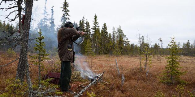 Efter dataintrånget – Naturvårdsverket ser över rutinerna