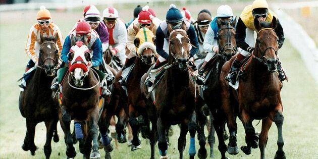 Missbildade kotor får hästar att störta