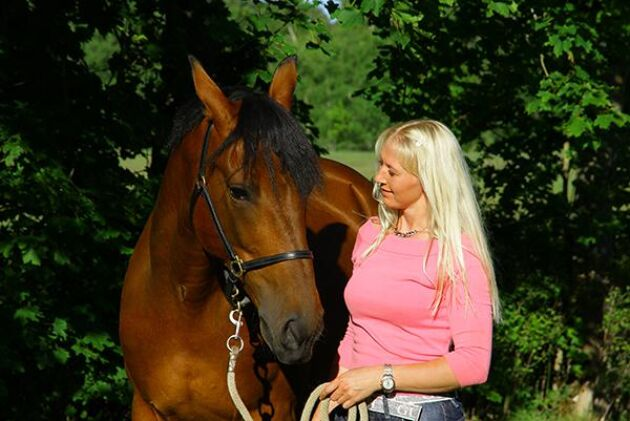 Hästen SHV Jocke och Jenny Larsson