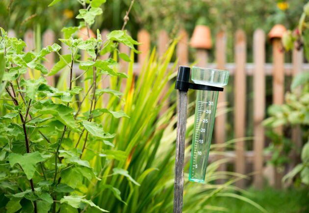 """Om du är trädgårdsägare kan du tjäna extraslantar som """"klimatobservatör"""" för SMHI."""