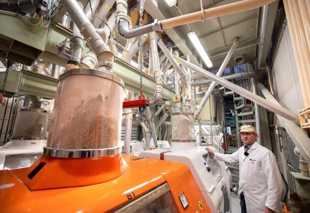 Fullkorn. På kvarnen finns olika delar för olika typer av processer. Här mals fullkorn av olika sädesslag.