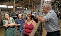 """Mjölkbonden som går plus: """"Vi kan inte jobba i stuprör"""""""