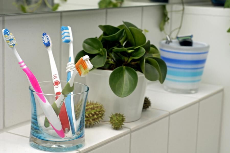Toothbrushes in the bathroom