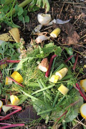 En trädgårdskompost tar vara på växtrester.