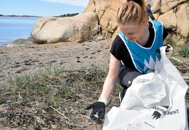 Tiotusentals svenskar ger sig ut på stränder runt om i landet den 4 maj för att plocka skräp.