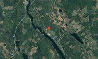 Ny ägare till skogsfastighet i Västernorrland i maj