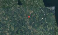 Skog i Mora kommun såld