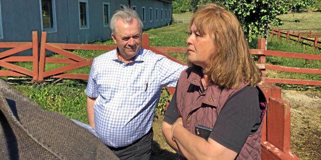 Bucht hoppas på EU-stöd för torkdrabbade bönder