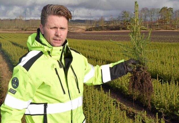 Nordic Plant Centers kärnprodukter är T-plus, som är omskolad täckrotsplanta, och traditionell barrot. Kunderna är framförallt skogsbolag, sågverkskoncerner och förvaltare i Götaland och Svealand.