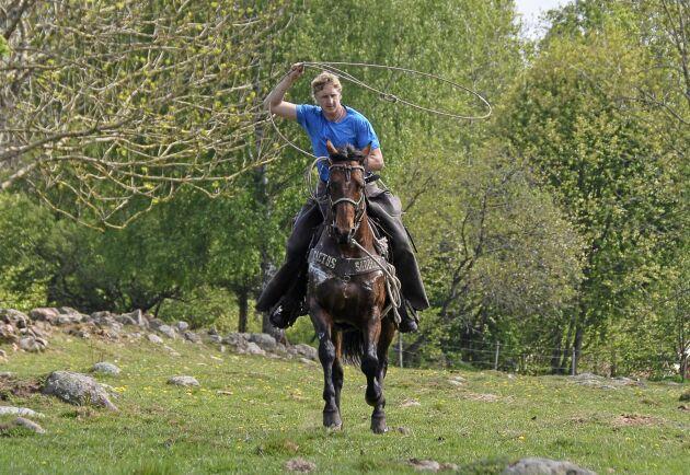 Många SM-guld i dummy roping och erfarenhet från rodeo i Kanada. Inte många djur tar sig förbi Tommy Arvidssons lasso.