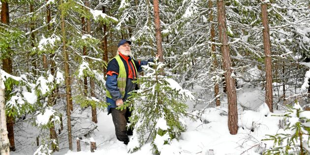 Tät skog håller älgen stången