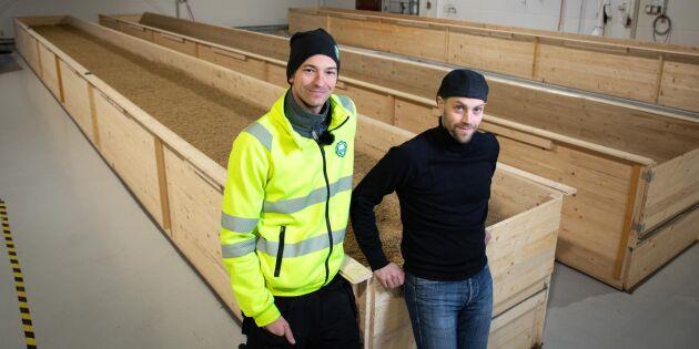På Brewmaster görs kornet till malt