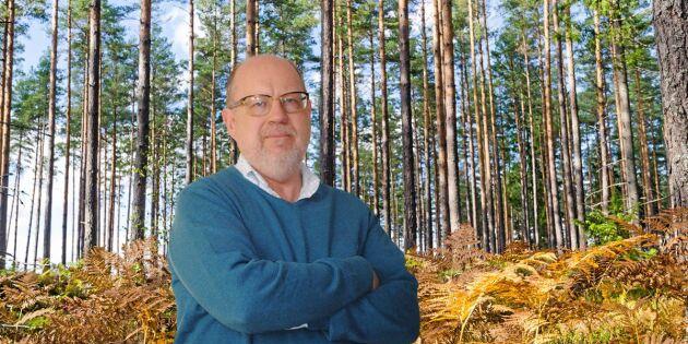 Ovanligt stor osäkerhet för skogsägare