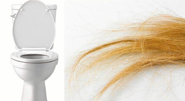 Nedspolat hår i toaletten kan orsaka stora problem i avloppet.