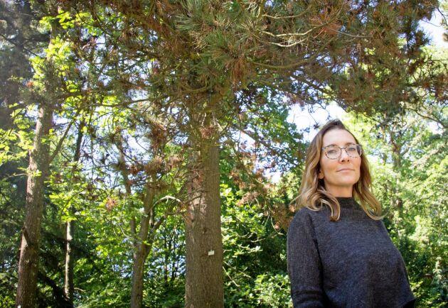 Michelle Cleary forskar kring trädsjukdomar på SLU Alnarp och var en av dem som upptäckte den nya, fruktade parasiten.