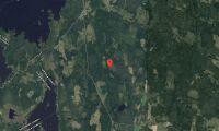 Nya ägarna ärver skogsfastighet i Uppsala