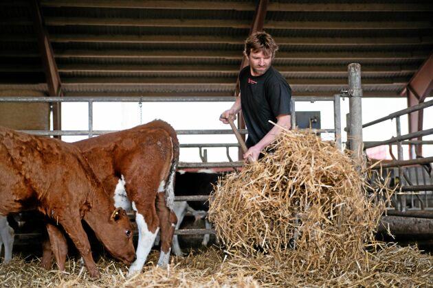 Magnus Carlman, mjölkproducent.