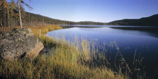 Fördubblad tystnad ska dra turister till Västerbotten