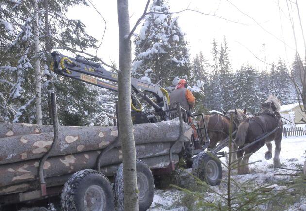 Hästens storskogsentreprenad specialbygger vagnar, för att underlätta samarbetet mellan förare och häst.