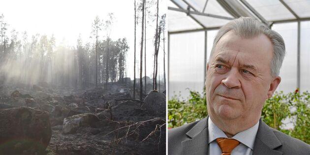 110 miljoner till skogsbruket efter bränderna