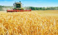 Lantbrukare vill ha dröjsmålsränta