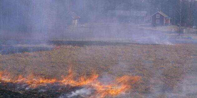 Varningen: Nu är det högsäsong för gräsbränder