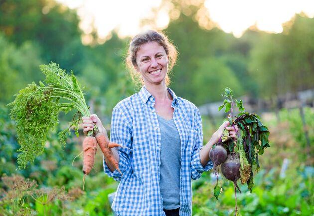 Att bli självhushållare är en dröm för många. Höns, får och egna odlingsmöjligheter lockar många.