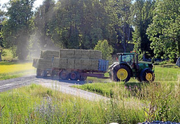 Alla länder som ansökt om att få skörda foder från träda tillåts det av EU.