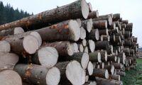 Mellanskog ändrar virkespriserna