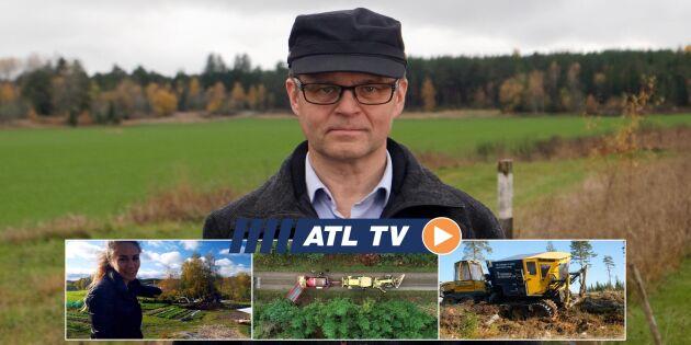 ATL TV: Sju av tio plantor hamnar rätt