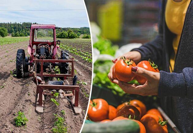 Importerade livsmedel gör att svenska bönder får allt mindre pengar.