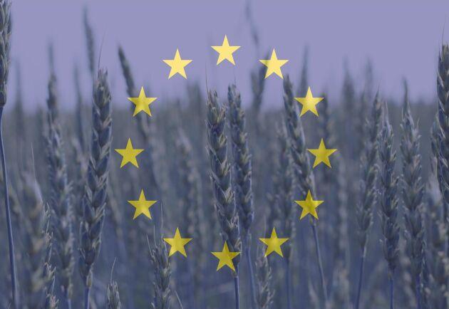 I slutet av 2021 hoppas EU att det nya klassificeringssystemet ska införas.