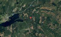 Ny ägare till skogsfastighet i Jämtland i september